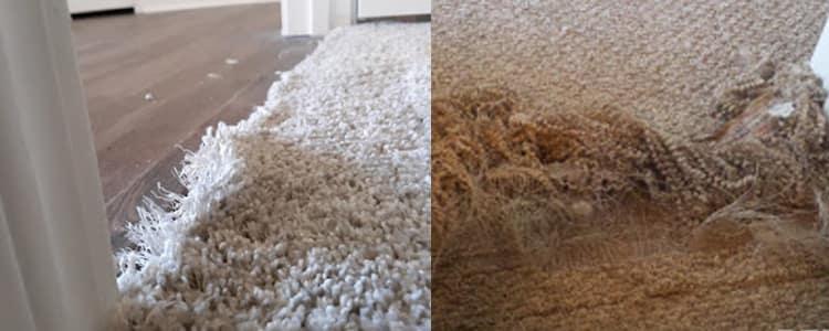 Best Carpet Repair Ringwood